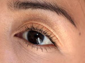 """Black"" eyes are simply Brown"