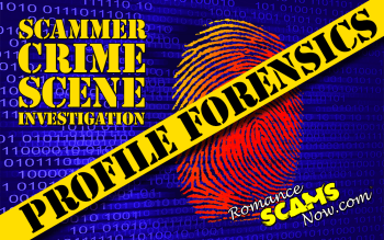 Scammer Profile Forensics