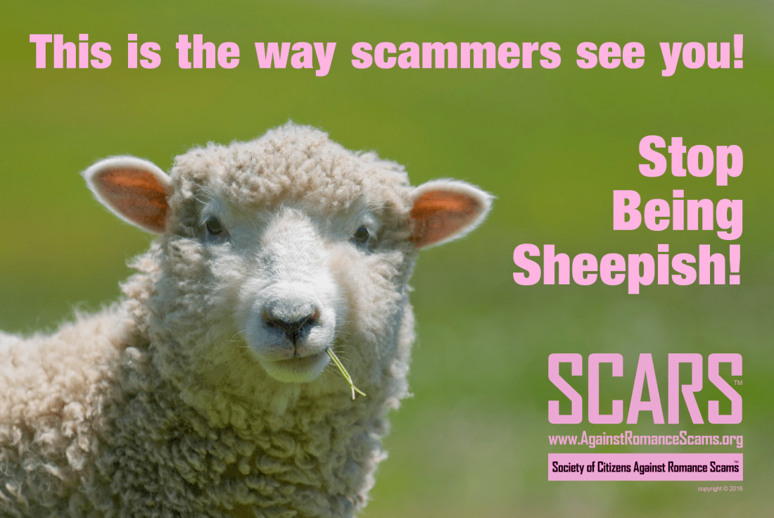 Don't Be Sheepish With Scammers!