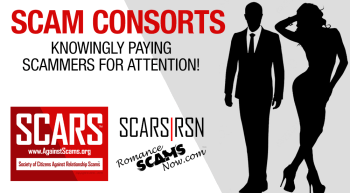 SCAM-CONSORTS-banner