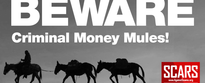 Criminal Money Mules