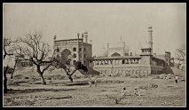 Old Delhi In Photographs (12)
