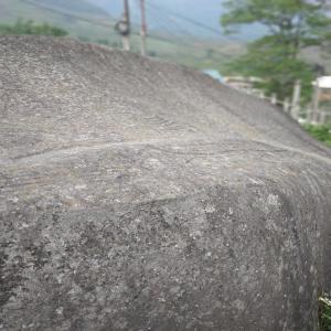 Gravures préhistoriques pétroglyphes à Ta Van, Vietnam