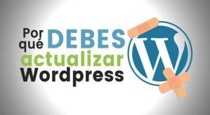 actualizar-temas-y-plugins-WordPress
