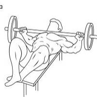 Squeeze Presses, Fly-Aways and Guillotine Presses: Image