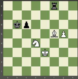 chess overprotection 1