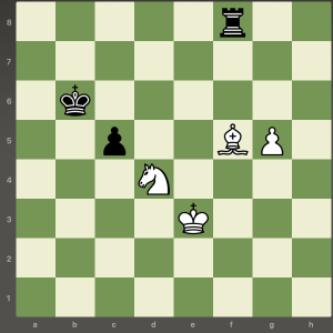 chess overprotection 2