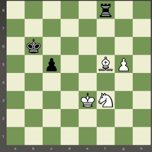 chess overprotection 3