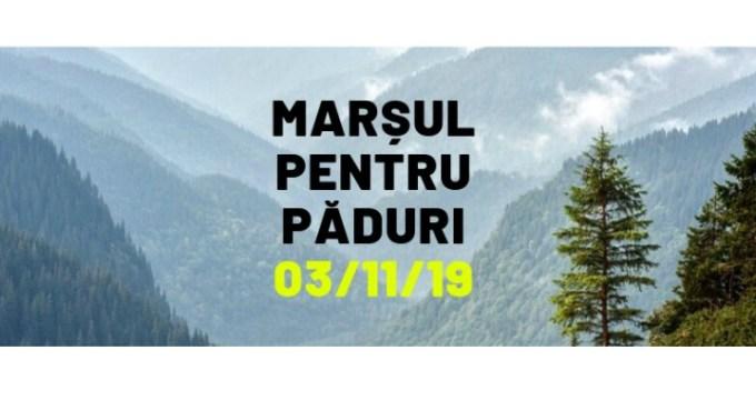 """Mergi?  Greenpeace Romania: """"Marșul pentru Păduri. Vrem protecția reală a pădurilor seculare"""" 1"""