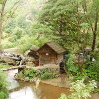 Nera Gorges national park (Cheile Nerei-Beusnita)