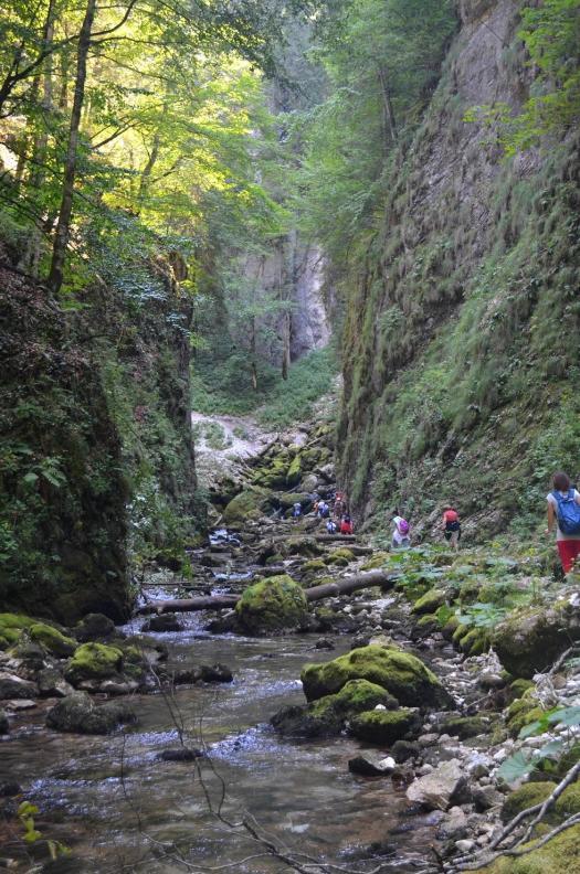 cascada_evantai romania carpathians mountains