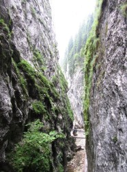 cheile-oarzei-2 romania carpathians mountains eastern europe