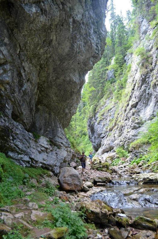 cheile_somesului_cald romania carpathians mountains