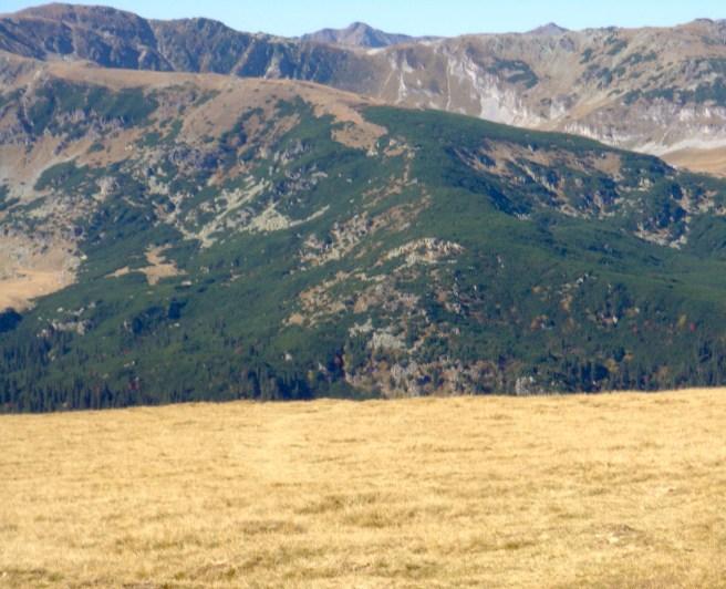Şoseaua Transalpină (Munții Parâng)