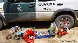 Palencia: Arestată o femeie care exploata un grup de români