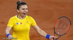 Simona Halep, Fed Cup