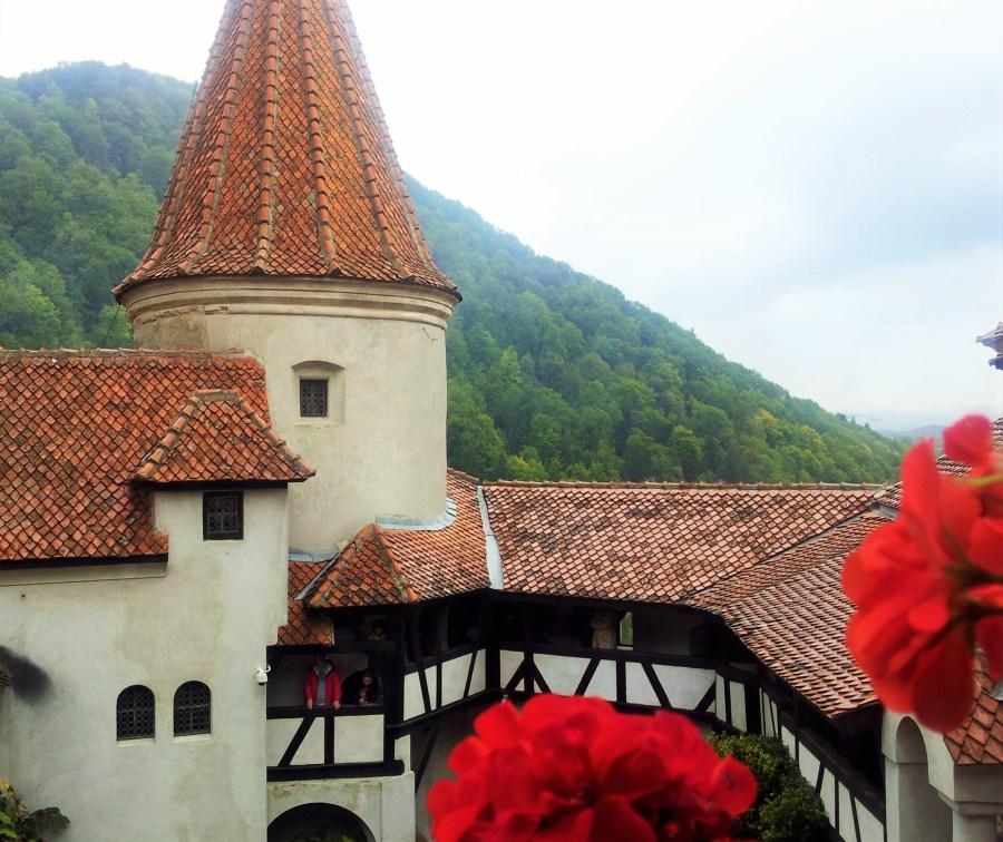 Castelul Bran Transilvania Romania