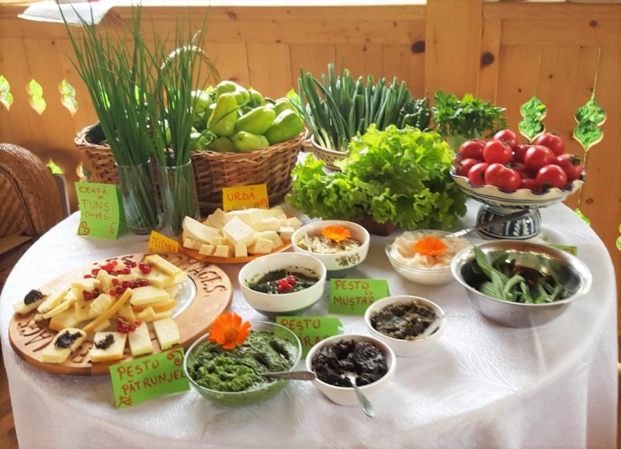 picnic_in_transilvania