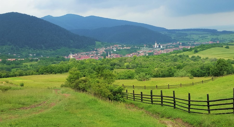Picnic Transylvania