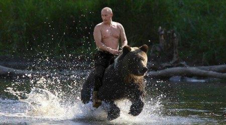 Putin_bear_cavalry