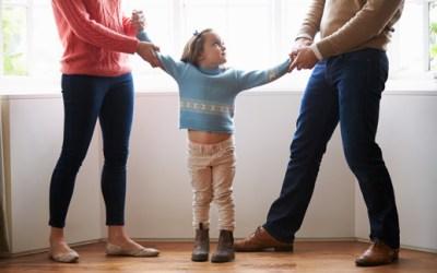 Case Spotlight: Guardianship of a Minor, A Major Victory