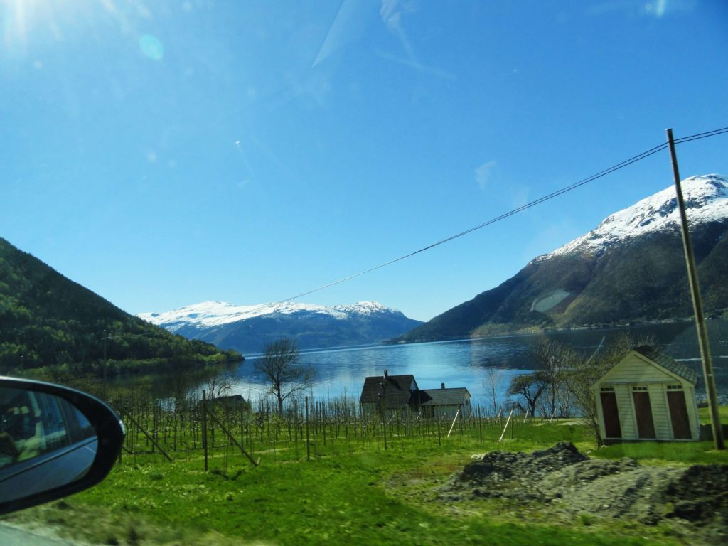 Road trip view from the window to Norway fjord