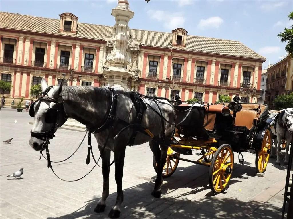 Конная упряжка в Валенсии