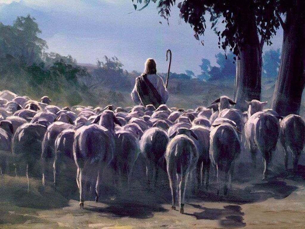 The Parable Of The Sheep And The Goats
