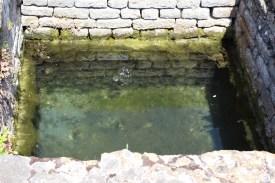 The sacred Gallic pool of Fontaines Sallees