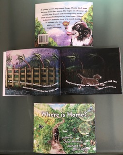 Where Is Home, by Dana Collins