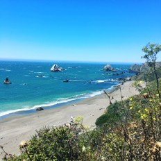 The Pacific Coast of Sonoma at Jenner-by-the-Sea