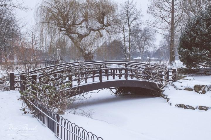 Snowy Regent's Park