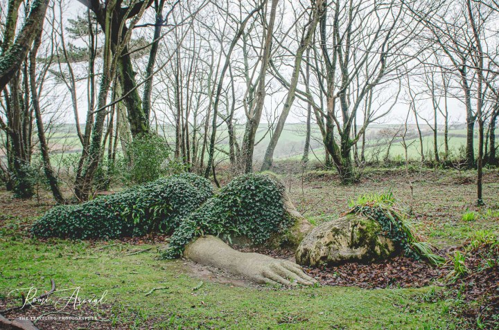 Get Lost In The Lost Gardens of Heligan