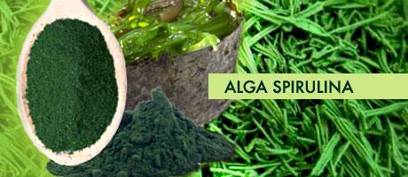 La super alga Spirulina: immunostimolante, anticancro, anti radicali liberi