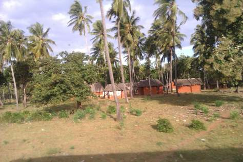 Paisaje de la ruta de Mombasa a Malindi, Kenia, África, 2012