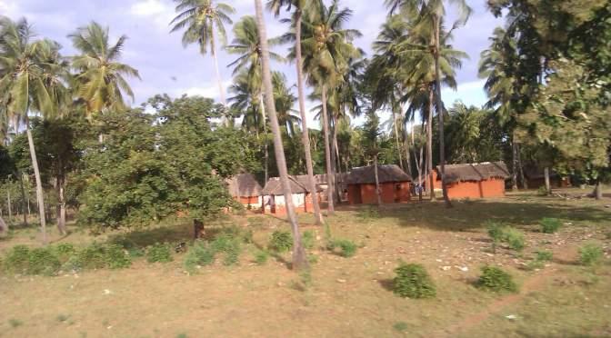 Mi primera experiencia en suelo africano: Malindi, Kenia