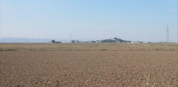 Campo de arroz antes de ser sembrado, Sueca, Valencia, España, marzo 2016