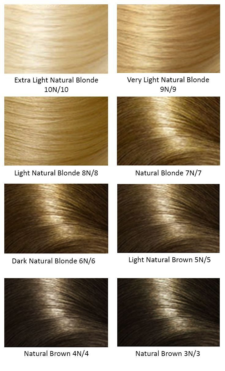 The Best Base Hair Colors Hair Color In 2019 Pinterest Hair Pictures