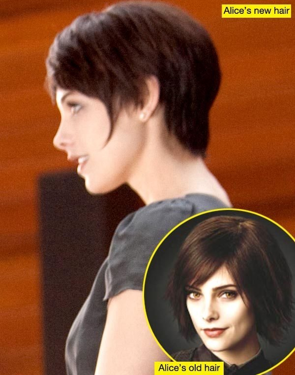 The Best Ashley Greene S Breaking Dawn Hairstylist Explains Alice Pictures