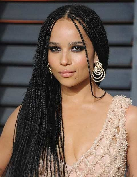 The Best 61 Beautiful Micro Braids Hairstyles Page 3 Of 6 Stayglam Pictures