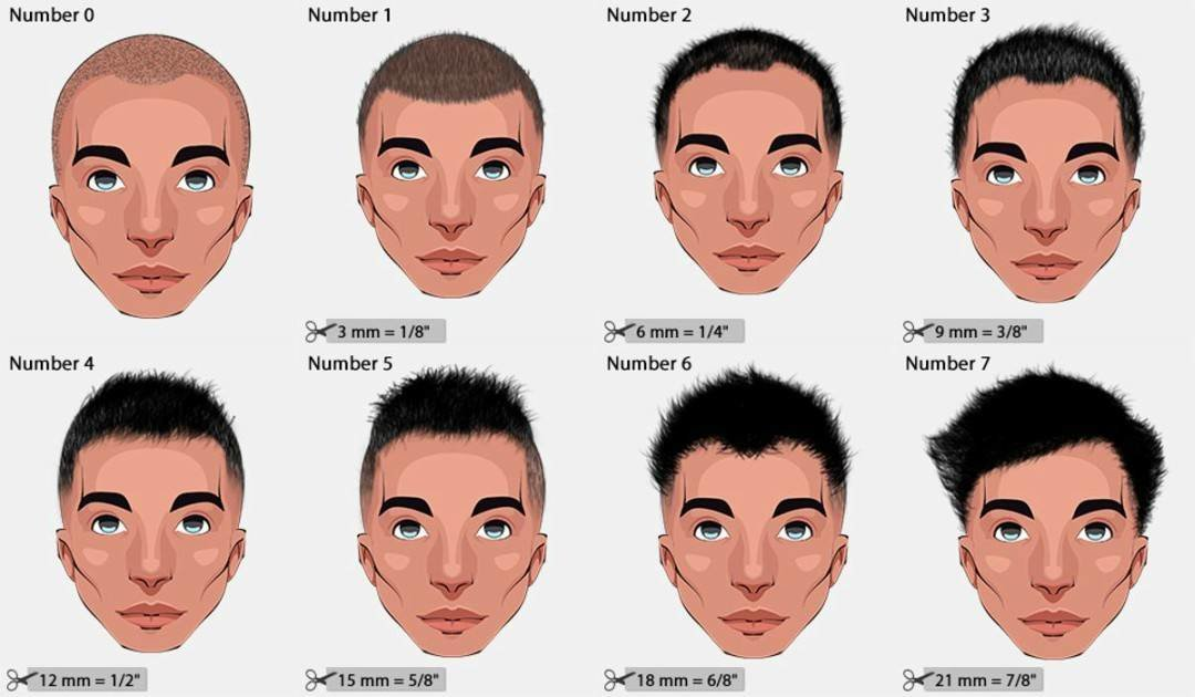 The Best Different Haircut Numbers Hair Clipper Sizes 2019 Pictures