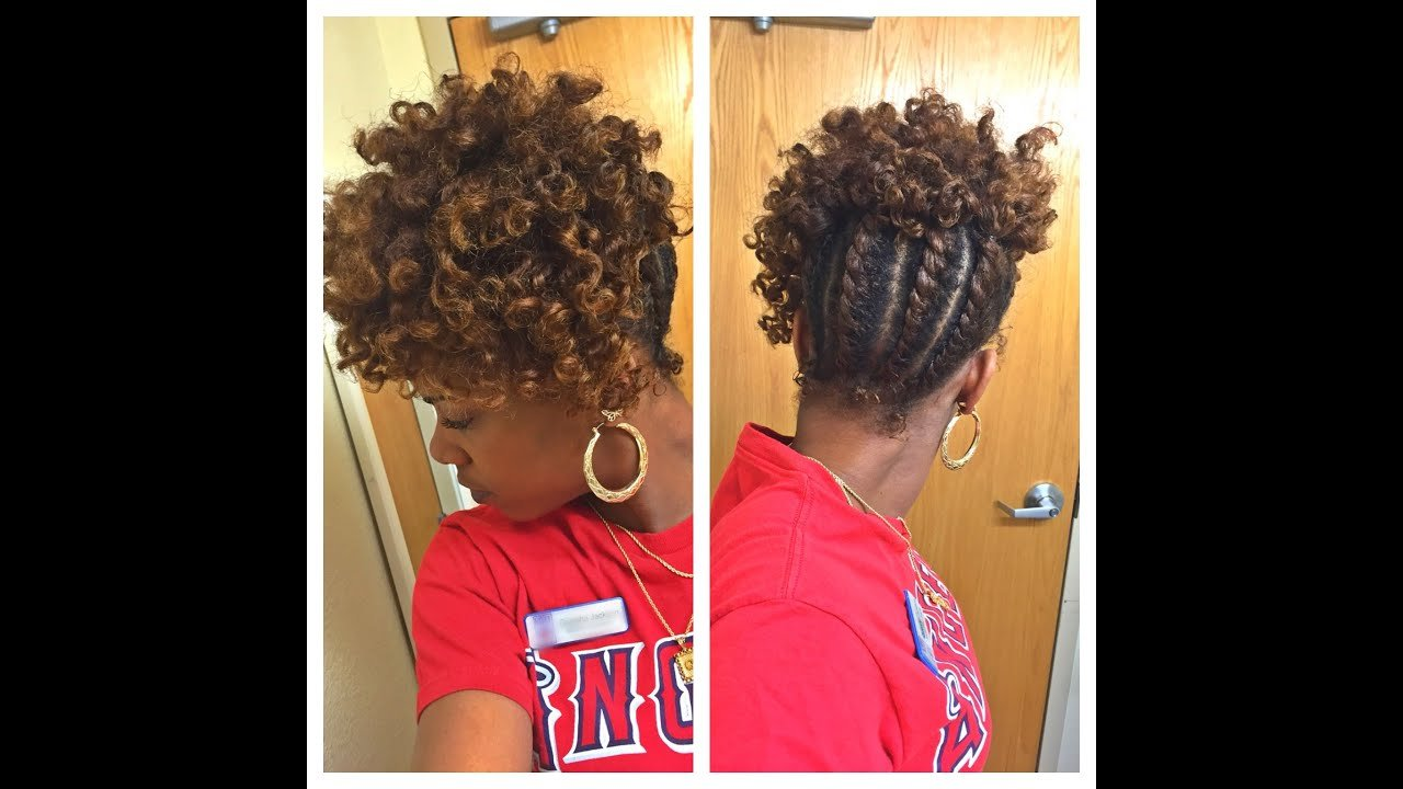 The Best Flat Twist Updo Tutorial Inspired By Thechicisnatural Youtube Pictures