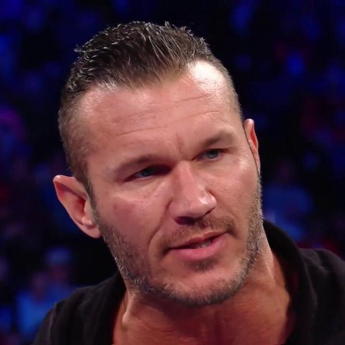 The Best Randy Orton's Hair Randyortonshair Twitter Pictures