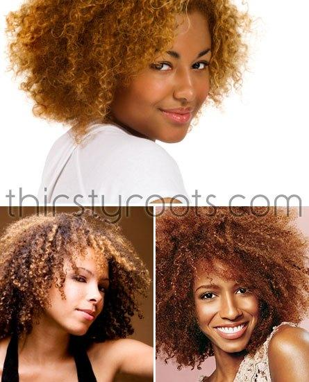 The Best Best Hair Color For Natural African American Hair Pictures