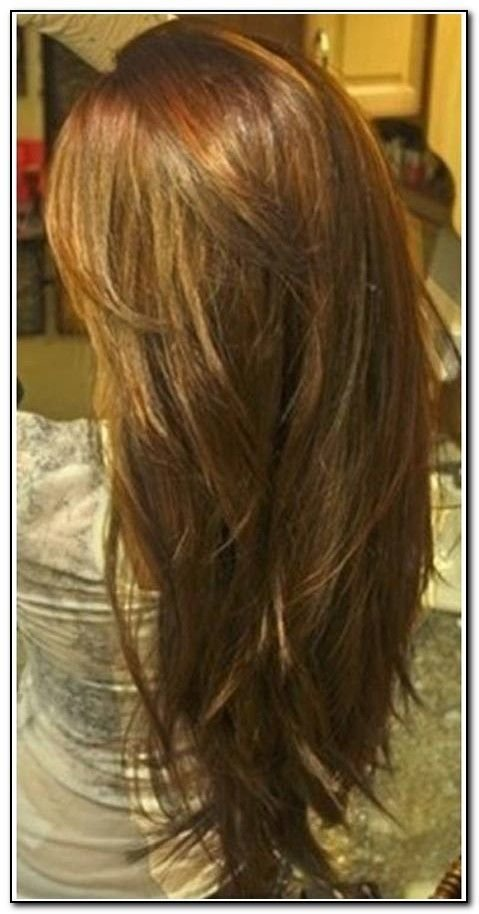 The Best Long Hair With Layers Back View Download Page – Beauty Pictures