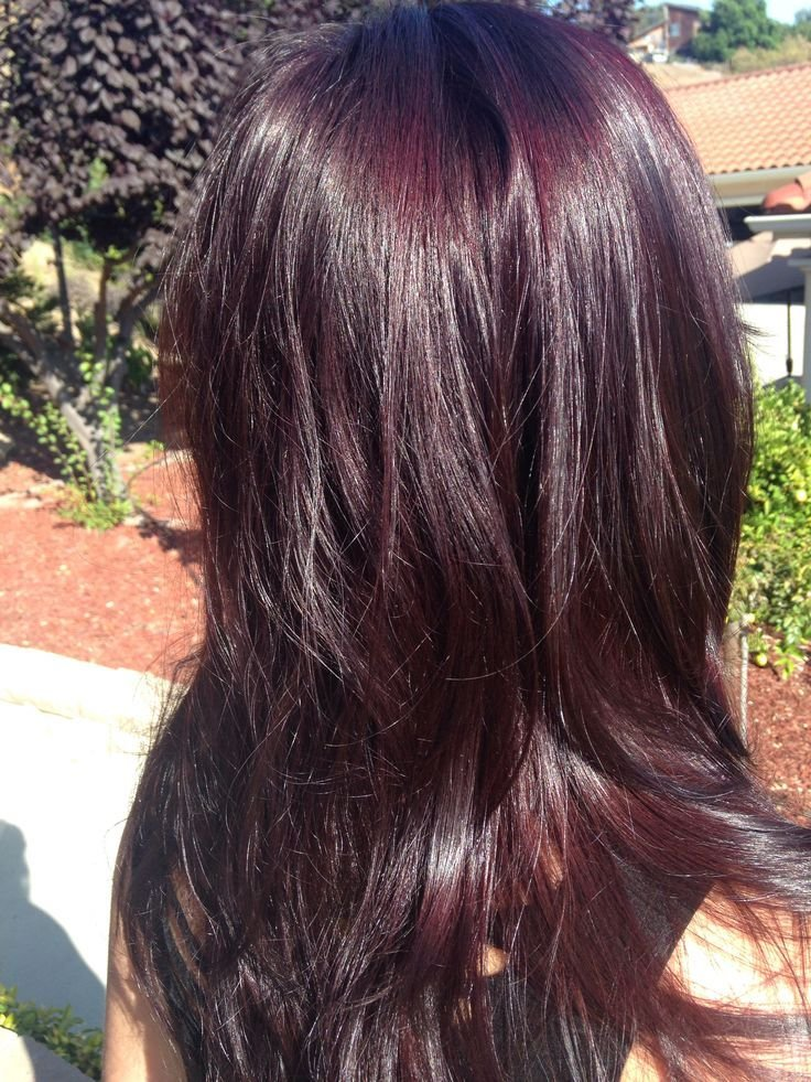 The Best Best 25 Redken Hair Color Ideas On Pinterest Brown Hair Pictures