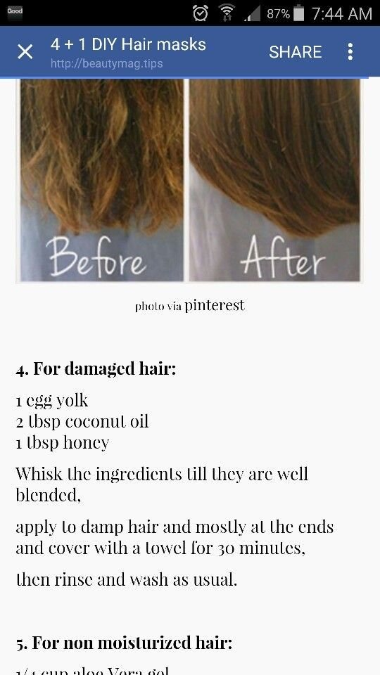 The Best Best 25 Hair Masks Ideas On Pinterest Damaged Hair Pictures