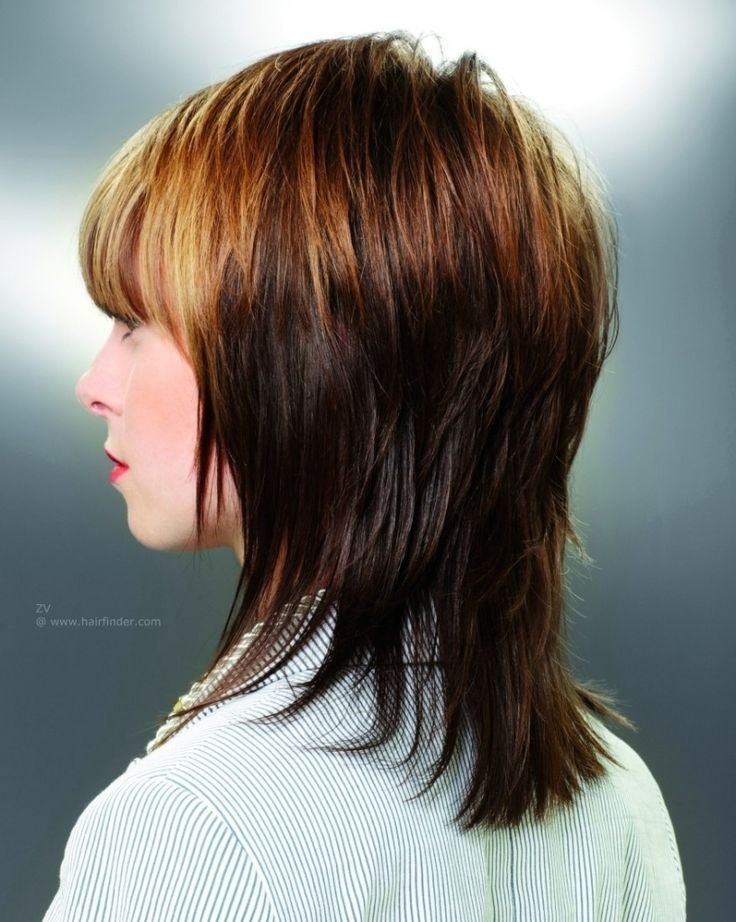 The Best 25 Best Ideas About V Layered Haircuts On Pinterest V Pictures