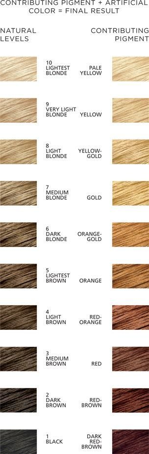 The Best Contributing Pigment Chart Lady Lovely Locks Ii Pictures