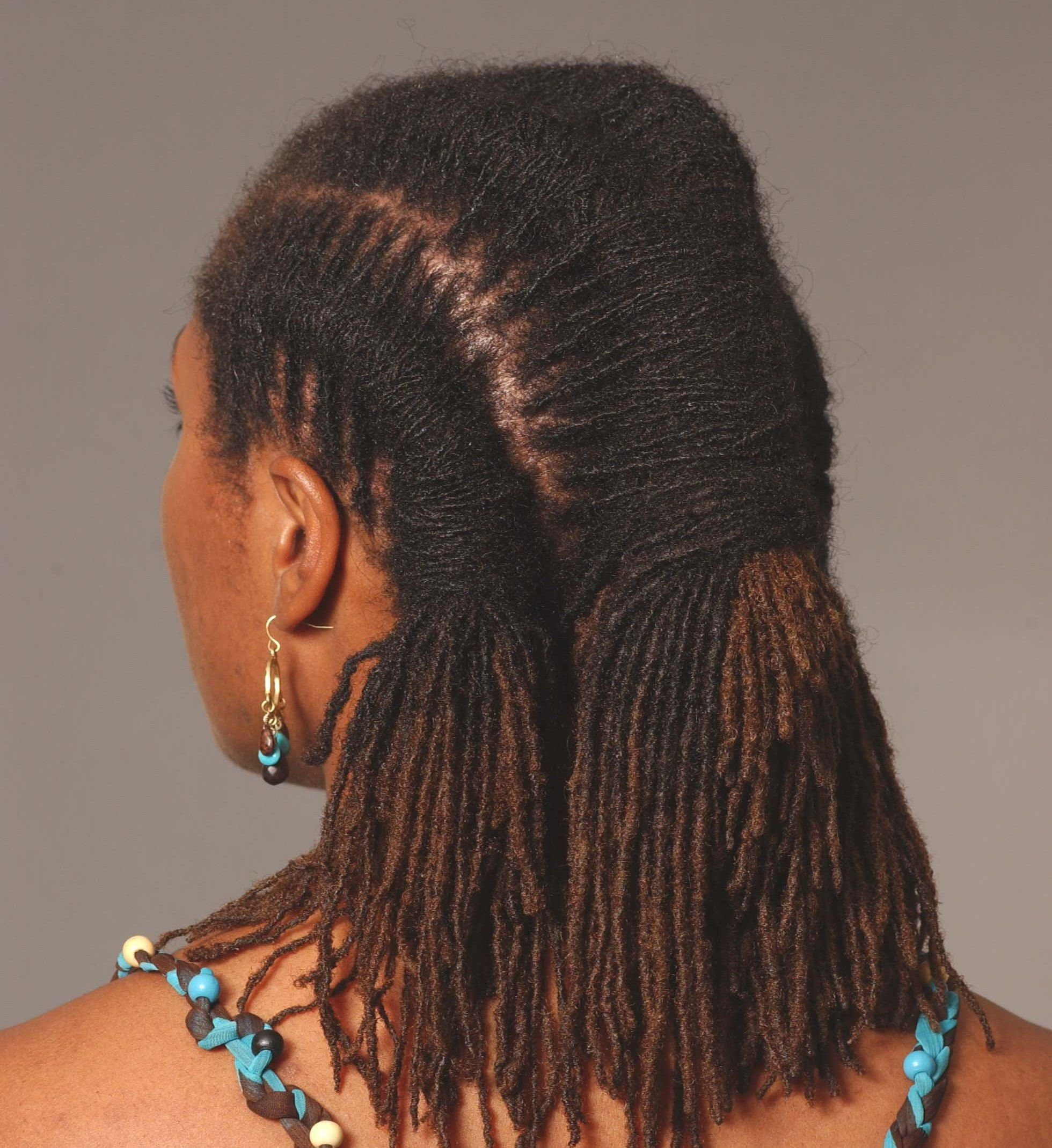 The Best Natural Sister Locks Hairstyles My Hairitage Loc Styles Pictures